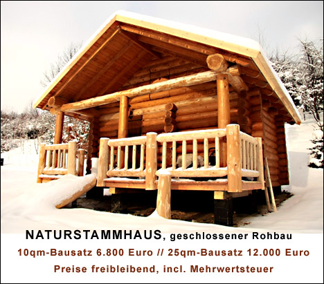 reetgedeckte gartenpavillons aus holz preiswert bauen lassen. Black Bedroom Furniture Sets. Home Design Ideas